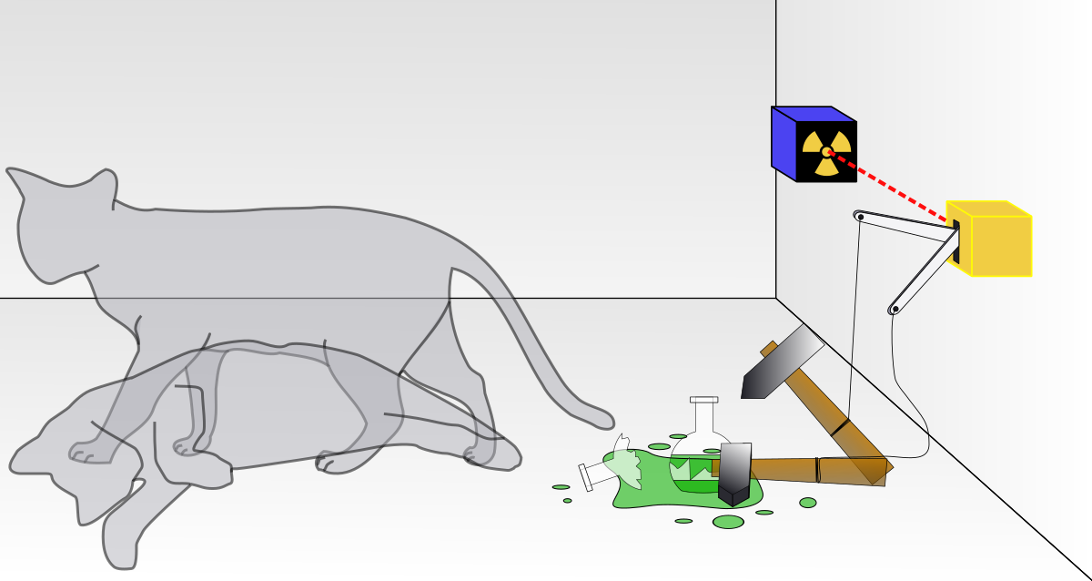 Schrödinger's cat illustration