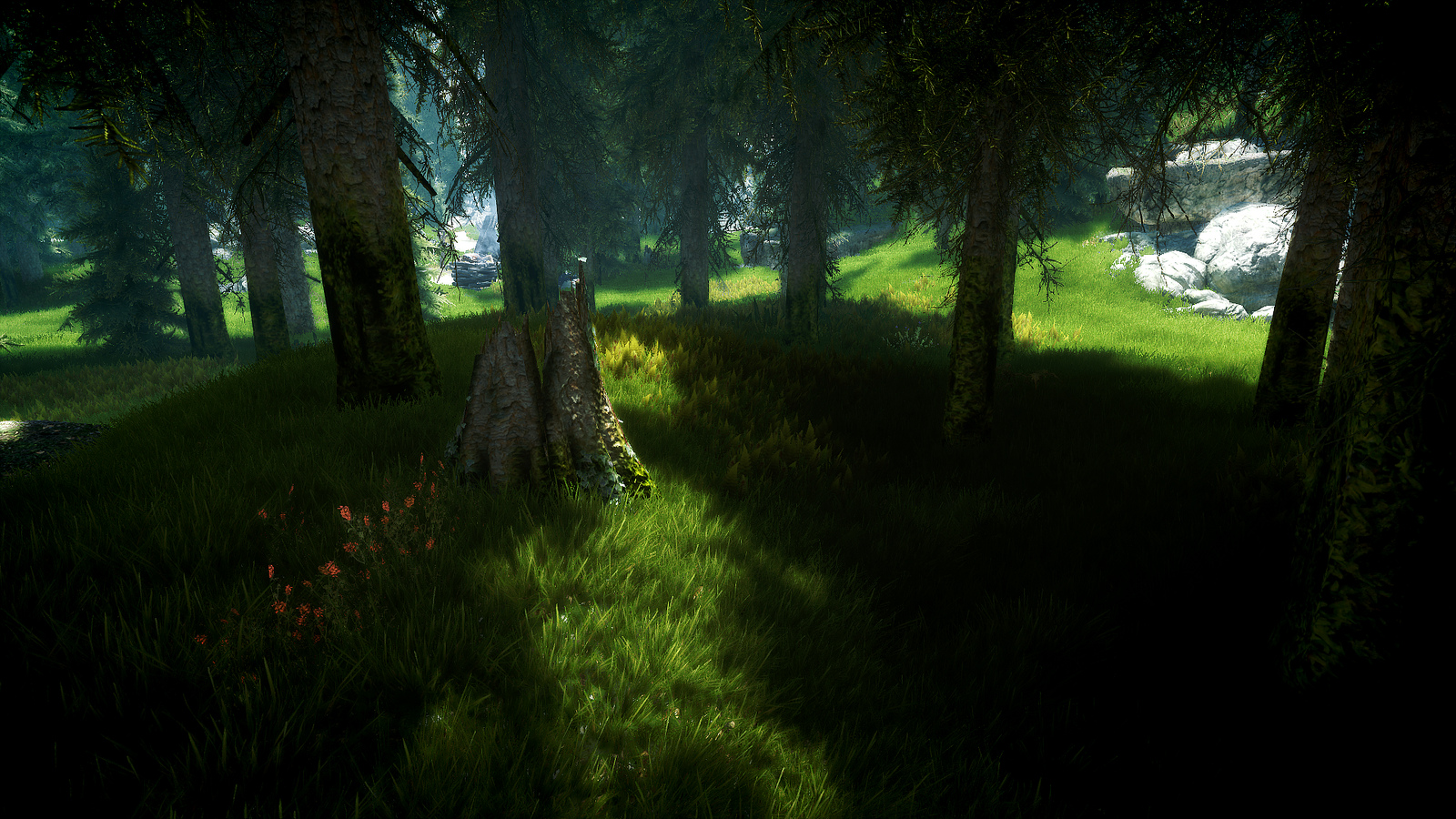 Skyrim grass and trees