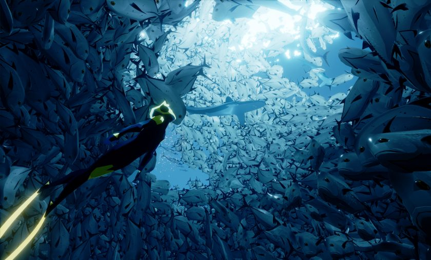 The Diver in a shoal of fish